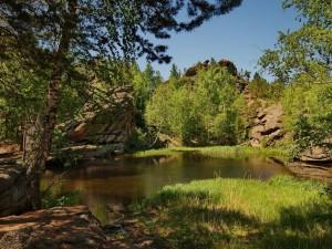 Озеро моховое. Алтай.