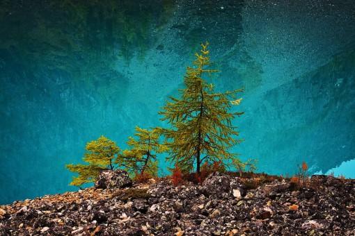 Сибирь. Шавлинские озера
