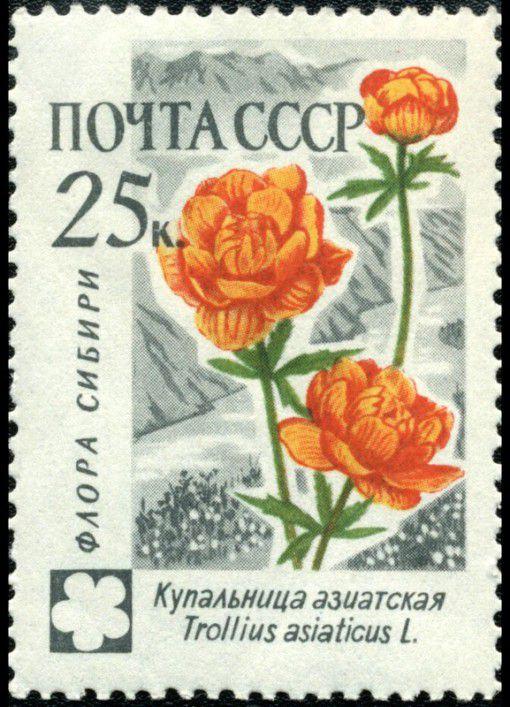 Советская марка с изображением купальницы азиатской
