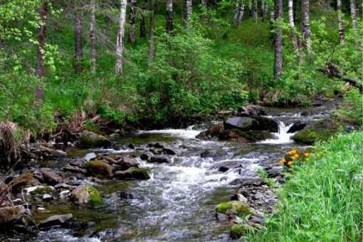 Каскад водопадов на реке Шинок