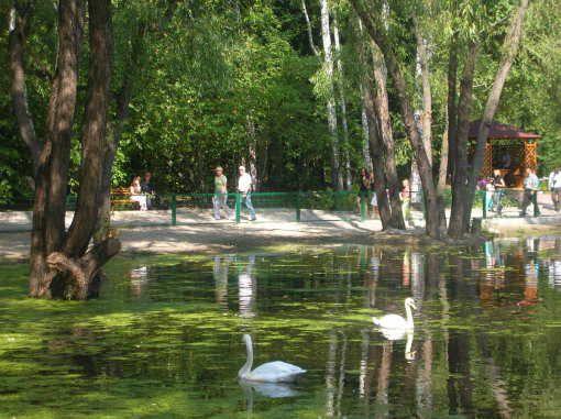 novosibirskij-zoopark-1