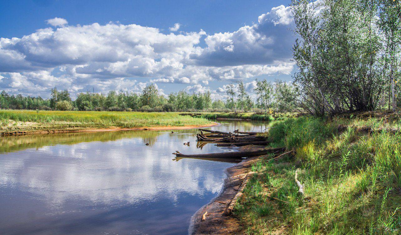 ХМАО, северная приобка, район протоки Балинская. Фото: Сергей Таширов.