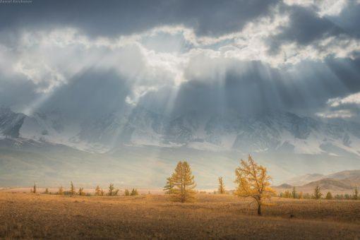 Алтай, Курайская степь, Фото