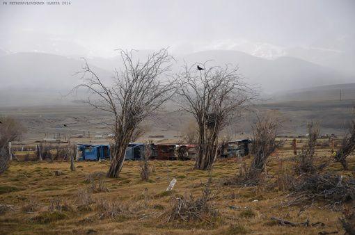 Алтай, Кош-Агач, фото