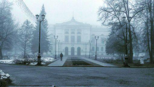 Университетская роща, Томск, Фото