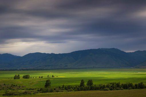 Уймонская долина, Алтай, фото