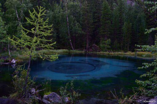 Озеро гейзеров, Кош-Агачский район, фото