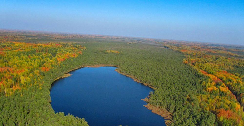 Тайга, Томская область, фото