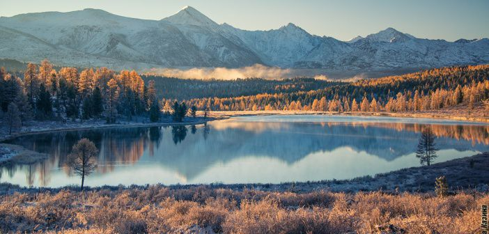 Дышите со мной… Озеро Киделю, Алтай ранним осенним утром.   фото: Светлана Казина
