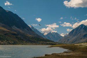 Озеро Аккуль, Алтай, фото