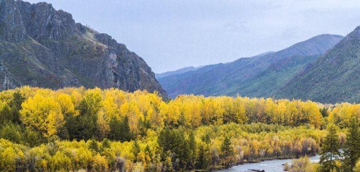 Осенние просторы Тувы среди Саянских гор. Фото: instagram maxksenzov