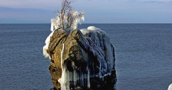 Черепаха, Байкал, Бурятия, фото