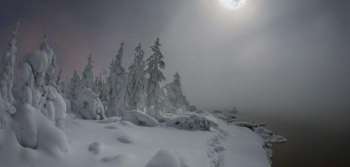 Лунная ночь…  Ханты-Мансийский автономный округ, Западная Сибирь.