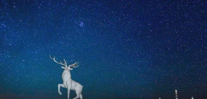 Иркутская область. Качугский (старый Якутский) тракт. Фото: instagram ilya.buyanov