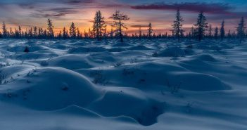 Тундра, Ямал, Фото