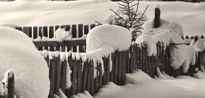 Окрестности п. Кошурниково. Красноярский край, Курагинский район   фото: Владимир Никулкин