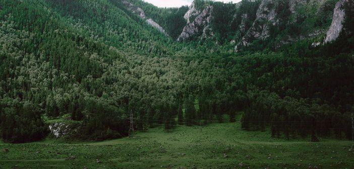 Горный Алтай Фото: Могилат