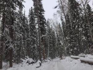 Иркутская область, Осинский район, Местность Хандагай, фото