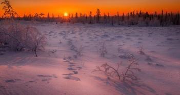 Догорал закат!  Ямал, фото: instagram evgeny_kuzhilev