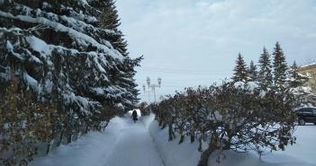Тара, Омская область, фото
