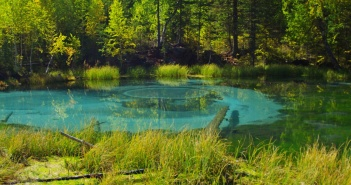 Гейзерное озеро, с. Акташ, Горный Алтай, фото