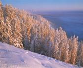 Долина реки Артык. Январь. Якутия. Оймяконский район. Фото: Владимир Рябков