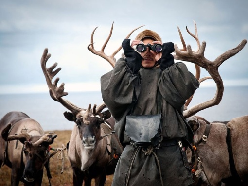 Западная Сибирь, Полуостров Тазовский, Фото