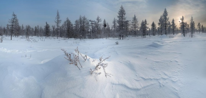 Февраль в тундре. Ямал, 2017 Фото: Камиль Нуреев
