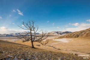 Чарков, гора Сагархая, Хакасия, Фото