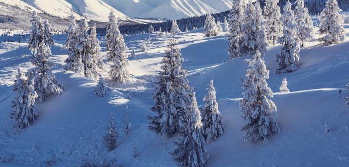 Морозная Якутия ❄❄❄ Фото: instagram ivandementievskiy