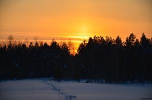 Томская область, фото