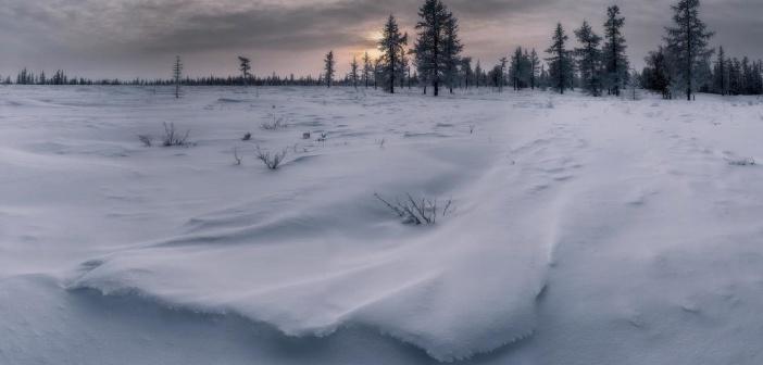 Февральский пейзажик. Ямал, 2017. Фото: Камиль Нуреев
