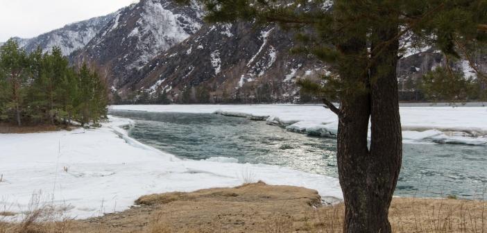Чемал, Горный Алтай   фото: Олеся Петропавловска