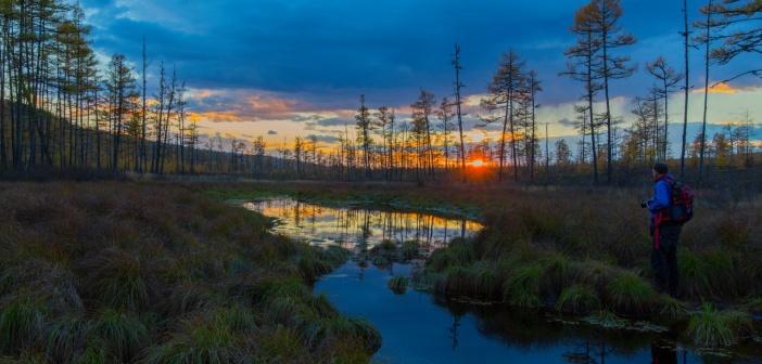 Таежный закат Фото: Алексей Миронов