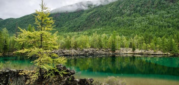 Изумрудное озеро, Бурятия Фото: Юлия Кузенкова