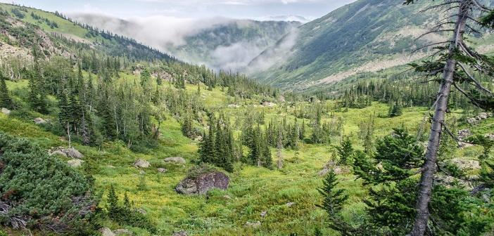 Зеленые склоны Мамая.  Хамар-Дабан, гора Мамай, Республика Бурятия.  Фото: Кирилл Буртасовский
