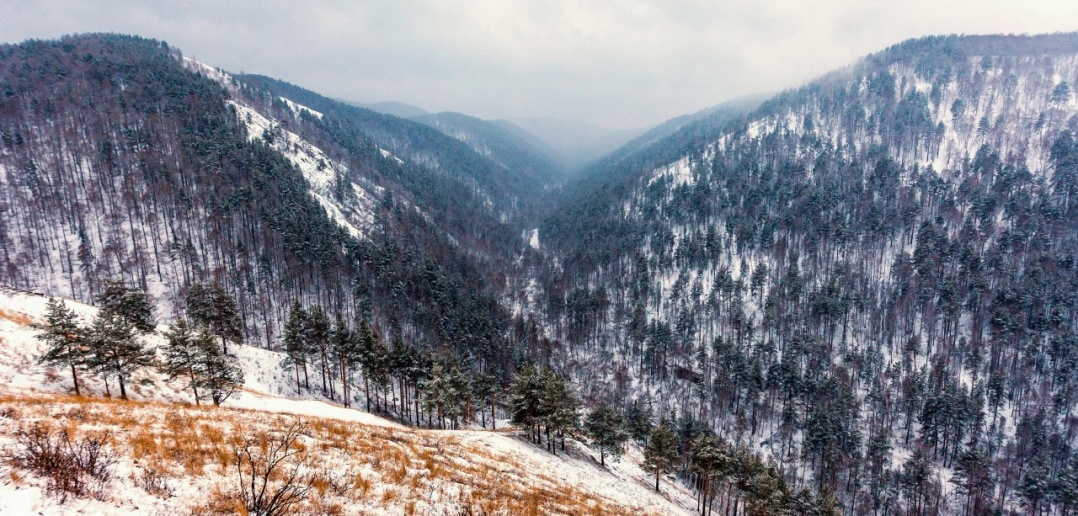 Красноярских Столбах, Фото