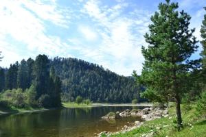 Река Бия, Алтай, фото