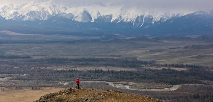 Алтай. Весна в Курайской степи Фото: Алексей Саламатов