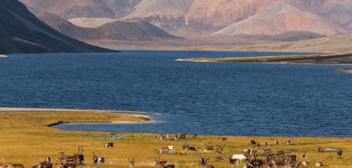 Озеро Тобандя, исток реки Чибагалах, система Черского, Якутия.  Фото: Кирилл Уютнов