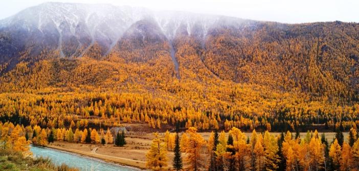 Река Чуя. Чуйский тракт. Фото: Ивановский Сергей
