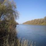 На берегах Иртыша
