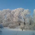 Берега Оми зимой
