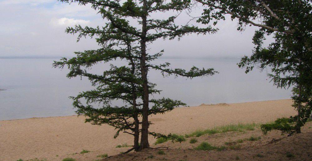окрестности  озера Арахлей