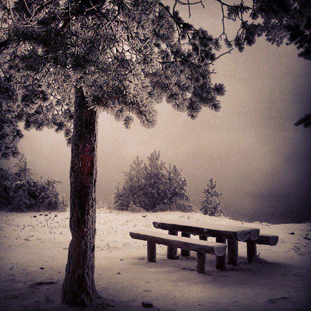 Сибирская зима фото: Евгений Филатов