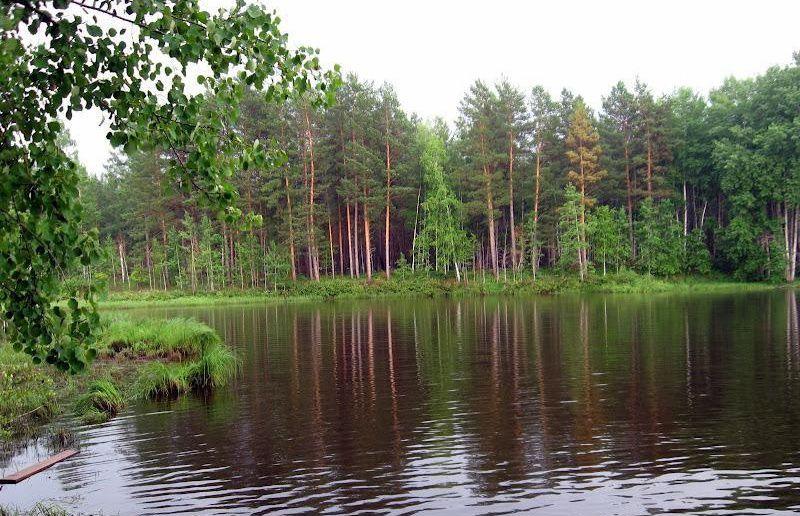 Монастырское озеро Источник: www.zapovedniki-mira.com