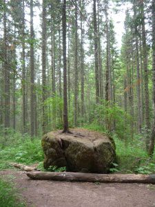 кросноярские-столбы-седашова-7
