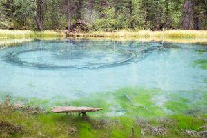 Гейзеровое (другие названия — Голубое и Серебряное) озеро находится в Горном Алтае вблизи села Акташ.