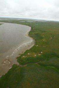 Река Таз - приток Оби