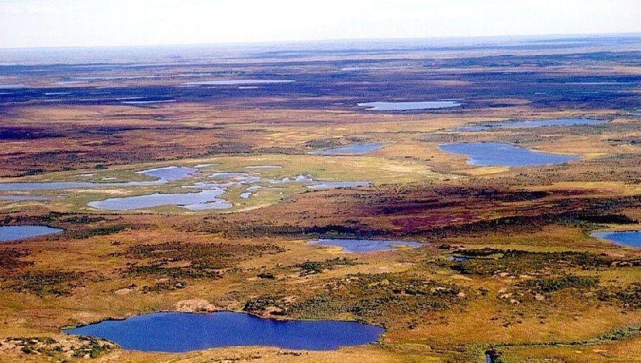 Тундра в Сибири